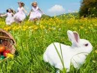 Szuper Húsvéti programok a családnak